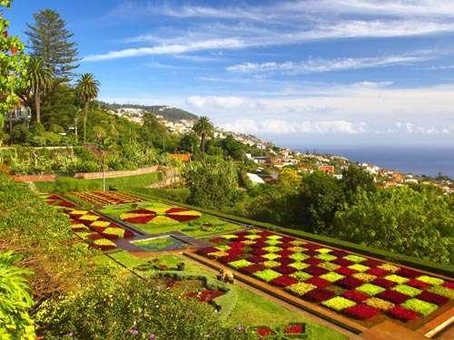 Fly-drive Schilderachtig Madeira + Vidamar Resorts